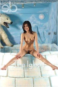 The Igloo 1