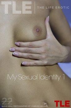 My Sexual Identity 1