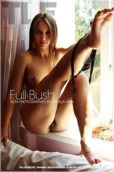 Full Bush
