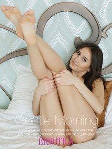 Gentle Morning