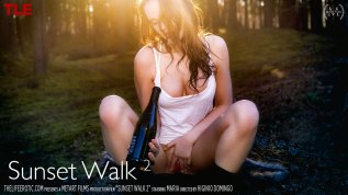 Sunset Walk 2