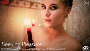 Seeking Pleasure 2