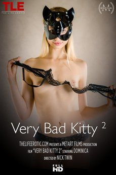 Very Bad Kitty 2