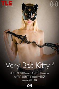 Very Bad Kitty 2