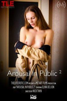 Arousal In Public 2