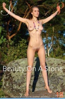 Beauty On A Stone